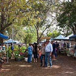 Mareeba Markets