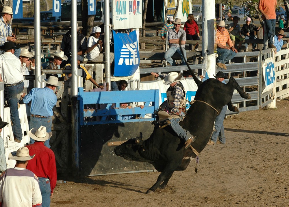 54-Rodeo+Action.jpg