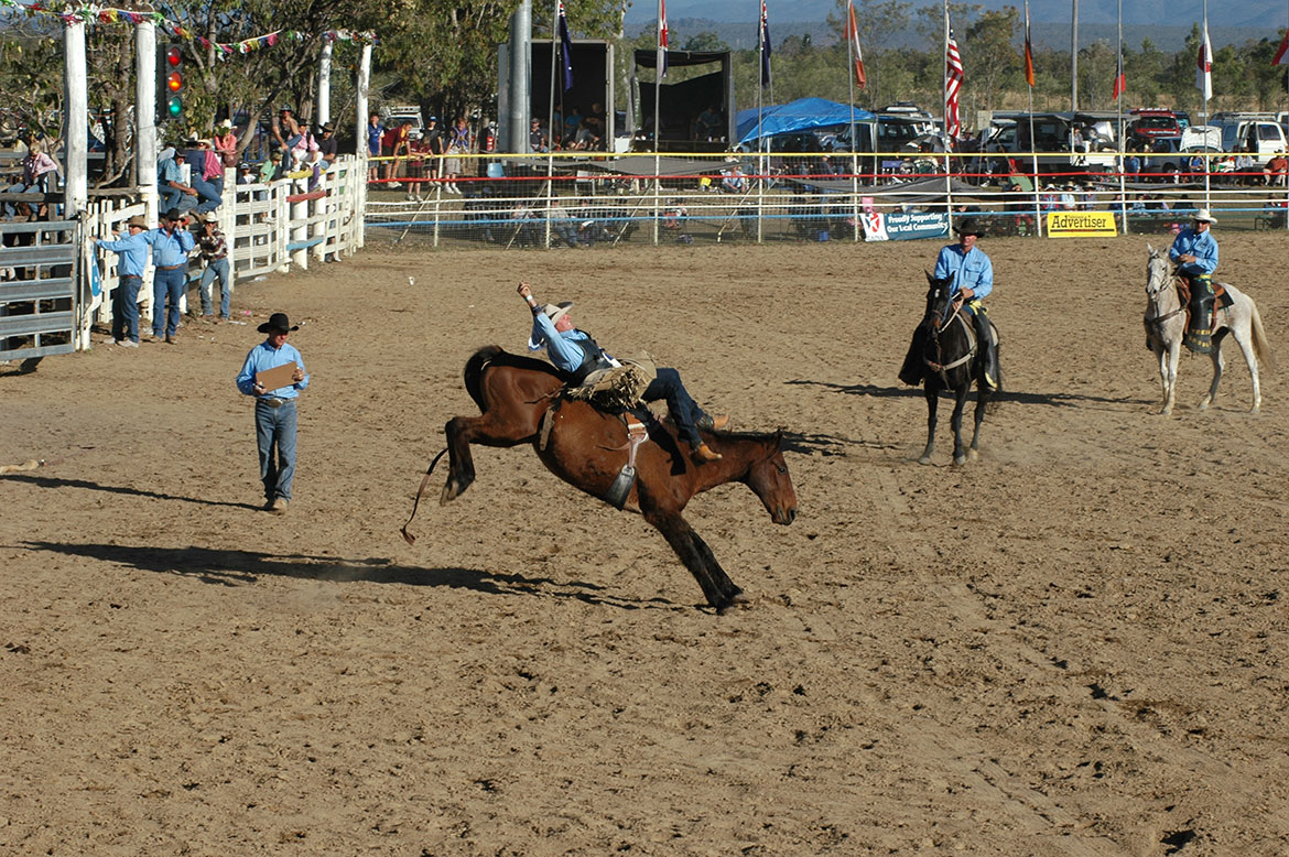 56-Rodeo+Action.jpg